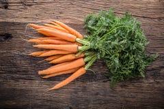 Carrot. Fresh Carrots bunch. Baby carrots. Raw fresh organic orange carrots. Healthy vegan vegetable food Stock Photography