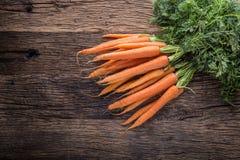 Carrot. Fresh Carrots bunch. Baby carrots. Raw fresh organic orange carrots. Healthy vegan vegetable food Royalty Free Stock Image