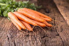 Carrot. Fresh carrots on rustic oak table.  royalty free stock images
