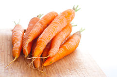 Carrot fresh vegetable group Royalty Free Stock Image
