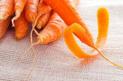 Carrot fresh vegetable group. Part Royalty Free Stock Photos