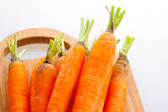 Carrot fresh vegetable group Royalty Free Stock Photo