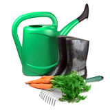 Carrot and gardening tools Stock Photos