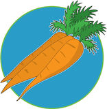 Carrot Graphic Stock Photography