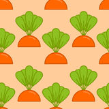 Carrot grow seamless pattern. Vegetable on garden bed background Stock Photo
