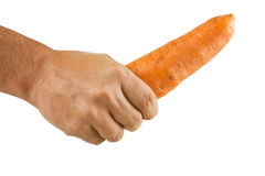 Carrot  in hand Stock Photography