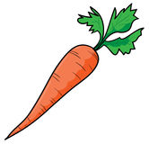 Carrot royalty free illustration