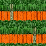 Carrot and a hare. Vector seamless pattern with carrots and hares Royalty Free Stock Image