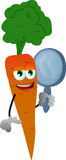 Carrot holding a mirror Stock Image