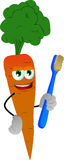 Carrot holding tooth brush Royalty Free Stock Images