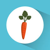 carrot icon. Nutrition and Organic food design. Vector graphic Stock Photos
