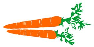 Carrot illustration. Vector illustration of carrot on white isolated Stock Photography