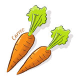 Carrot Illustration Royalty Free Stock Photo