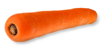 Carrot isolated Royalty Free Stock Photography