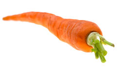 Carrot on isolated Stock Photo