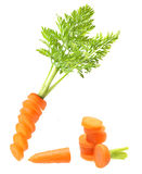 Carrot isolated Stock Photos