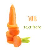 Carrot isolated Stock Photography