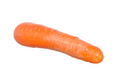 Carrot isolated on white Stock Image