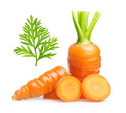 Carrot isolated on white Royalty Free Stock Image