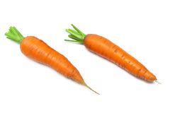 Carrot isolated on white background Royalty Free Stock Photos