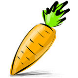 Carrot isolated on white vector illustration Stock Photography