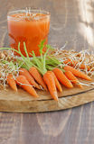 Carrot juice and fresh Royalty Free Stock Photo