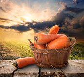 Carrot and landscape Royalty Free Stock Image