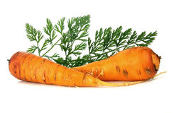 Carrot and leaf Stock Photo