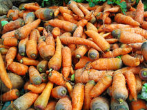 Carrot in local market Stock Photo