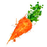 Carrot made of colorful splashes Royalty Free Stock Image