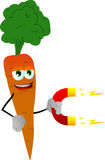 Carrot with magnet Stock Photos