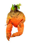 Carrot man Stock Photo