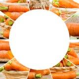 Carrot Mix Slices Stock Photo