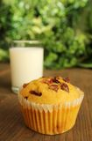 Carrot muffin Royalty Free Stock Image