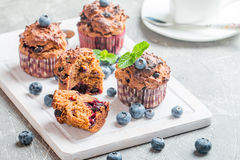 Carrot muffins with blueberrie Stock Image