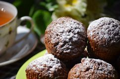 Carrot muffins Stock Photography