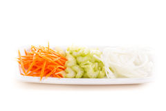 Carrot, onion and celery on a plate Royalty Free Stock Images
