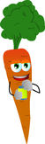 Carrot opening a beer can Royalty Free Stock Images