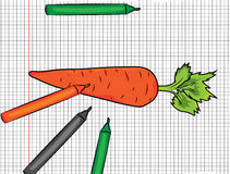 Carrot painted on papper illustration Royalty Free Stock Image