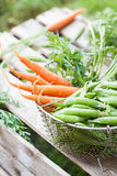 Carrot and peas Royalty Free Stock Image