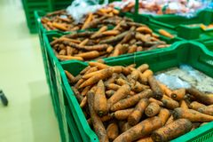 Carrot in plastic boxes in a vegetable shop stock image