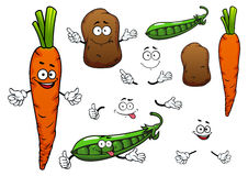 Carrot, potato and green pea vegetables. Happy orange carrot, brown potato and green pea pod vegetables cartoon characters isolated on white background for Stock Photos