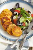 Carrot and potato pancakes Stock Images