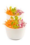 Carrot and radish salad. In white bowl on white background royalty free stock photography