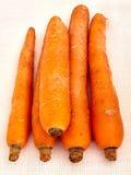 Carrot Royalty Free Stock Photos