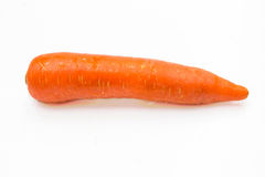 Carrot root Stock Photography