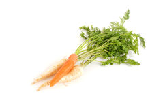 Carrot and root parsley Royalty Free Stock Images