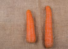 Carrot root photographed on a Jute fabric royalty free stock photos