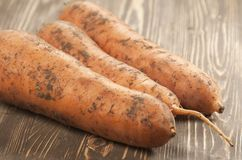 Carrot-roots on a board Stock Image