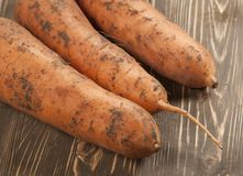 Carrot-roots on a board Royalty Free Stock Images